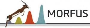 MORFUS Equipamiento Comercial, Empresa Gacela 2017